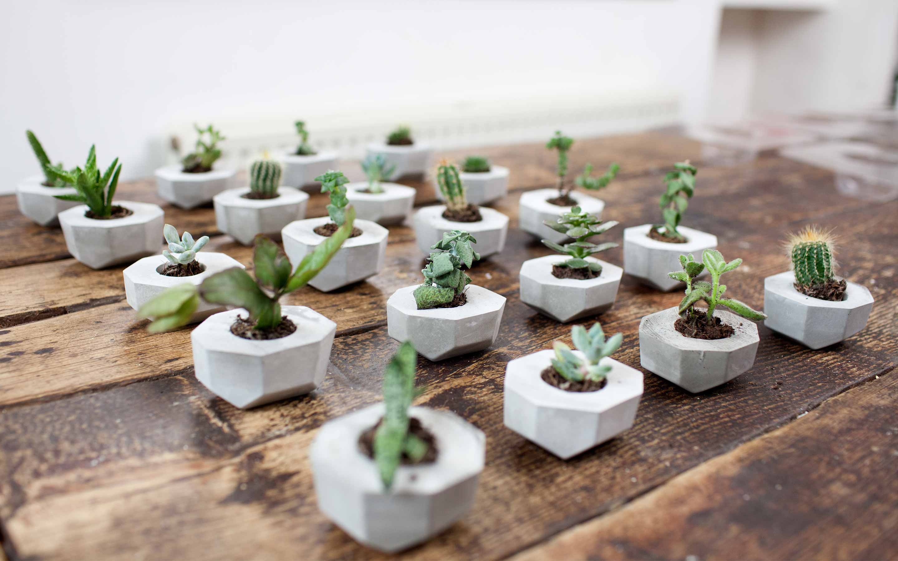 FormBox production line planter - http://weirdatheart.com/friday-favorite-formbox/
