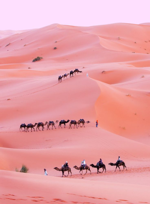 2017 travel bucket list - morocco | http://weirdatheart.com/2017-travel-bucket-list/